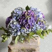 Blue Hydrangea Studio Choice Bouquet