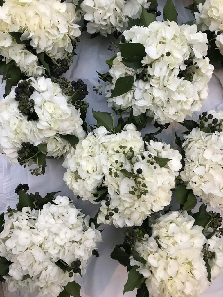 Photo showing vase arrangements of white hydrangeas en masse vases for Party flowers London created by Kensington flowers